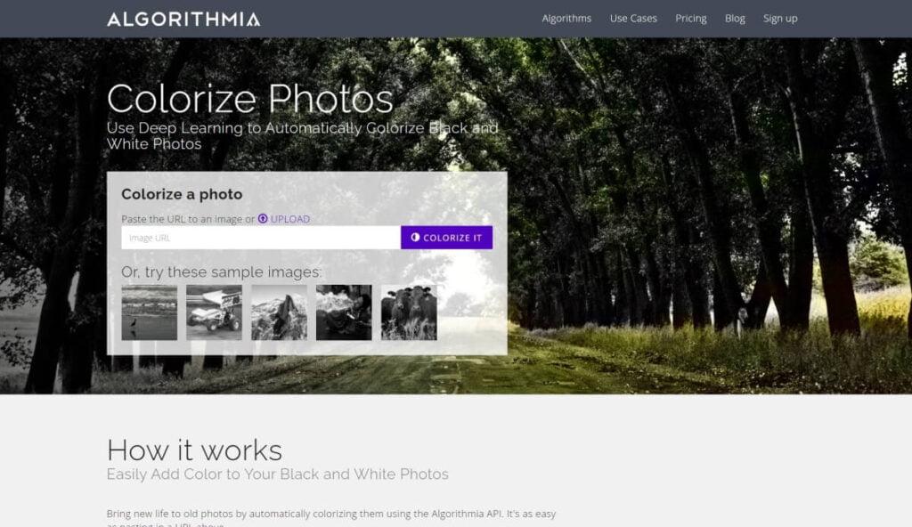 Algorithmia Colorize Photos AI Program
