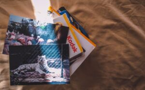A faded photo collection